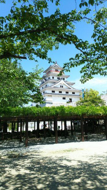 唐津城の虹の松原
