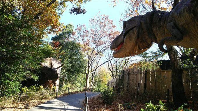 ディノアドベンチャー名古屋のトリケラトプスとティラノザウルス