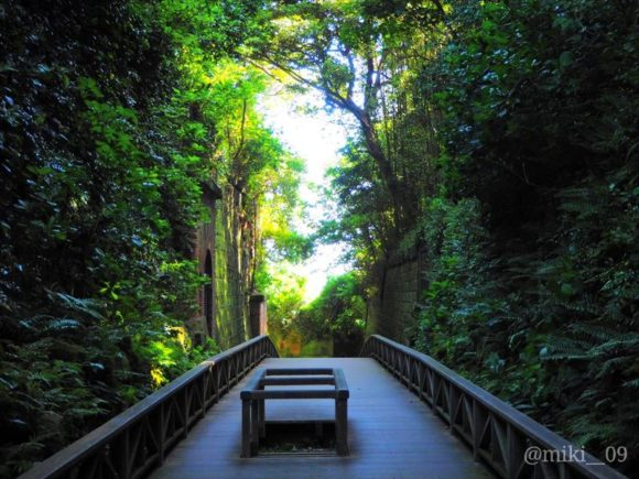 東京湾の無人島猿島