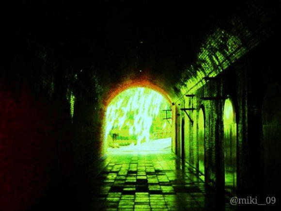 東京湾の無人島猿島の愛のトンネル