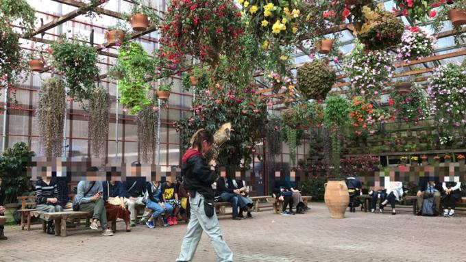 富士花鳥園のバードショー