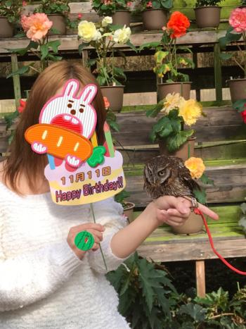 富士花鳥園のフクロウ腕乗せ体験
