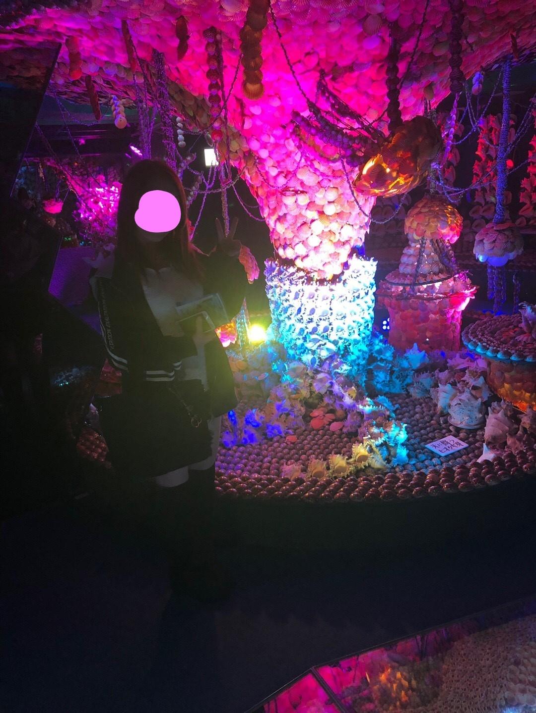 竹島ファンタジー館のクラゲの世界