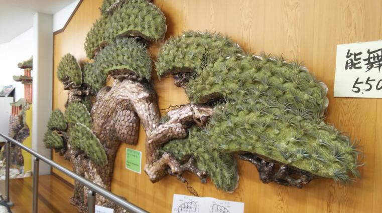 竹島ファンタジー館貝で作られた松