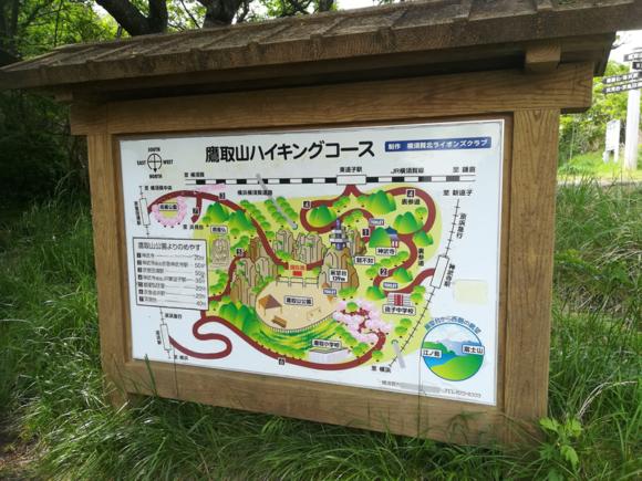 鷹取山のハイキングコース