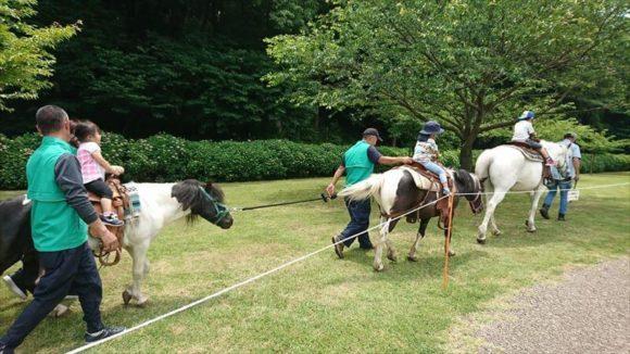 ポニーへの乗馬体験