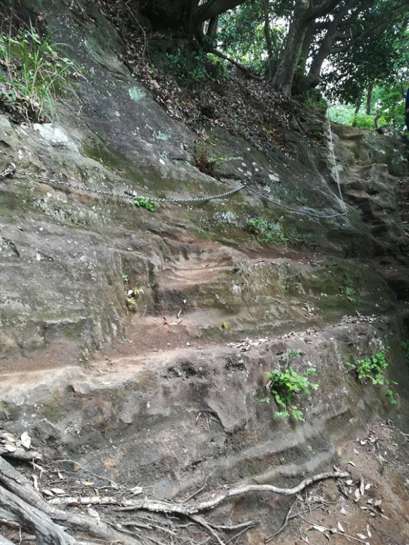 鷹取山への道